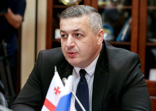 Member of the Alliance of Patriots of Georgia party in the Parliament of Georgia Giorgi Lomia