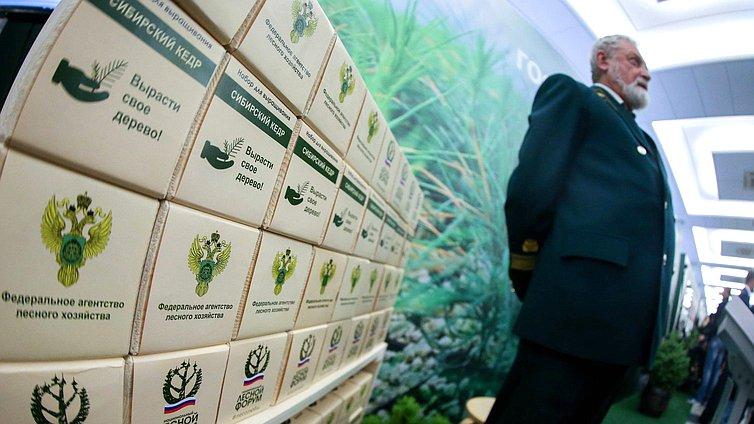 Открытие выставки «Итоги Национального лесного форума»